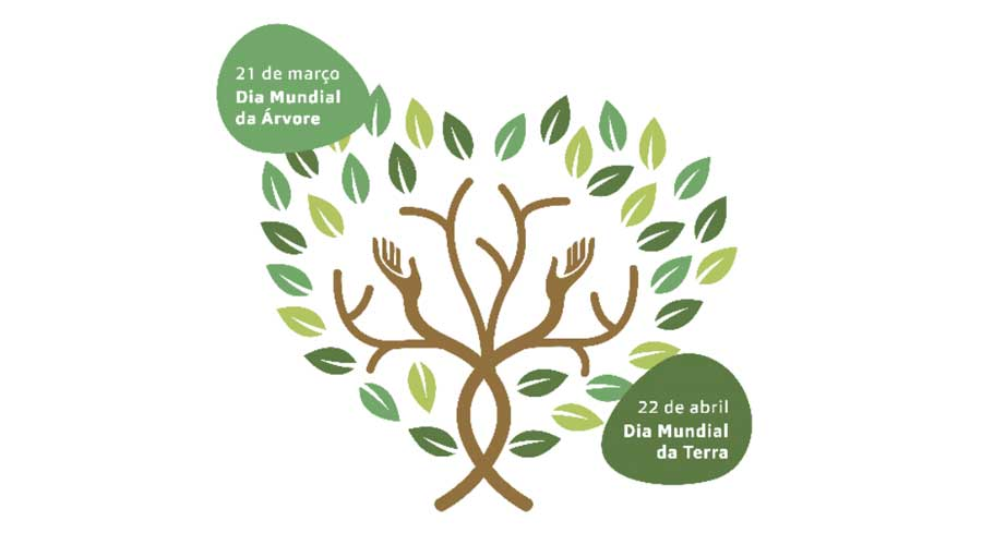 franchising MultiOpticas planta uma árvore por cada óculo graduado vendido