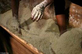 A farinha de trigo-barbela é