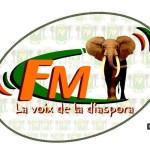 Logo - La voix de la diaspora