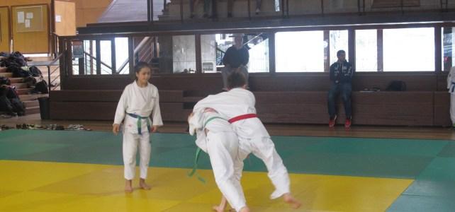Championnat académique collège  JUDO du mercredi 3 février 2016 à Brétigny