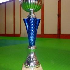 Championnat Académique Judo individuel et par équipes