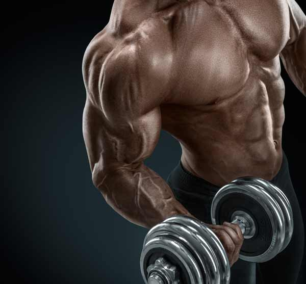 Barbell curls vs. dumbbell curls. Which is the more effective bicep exercise and why?