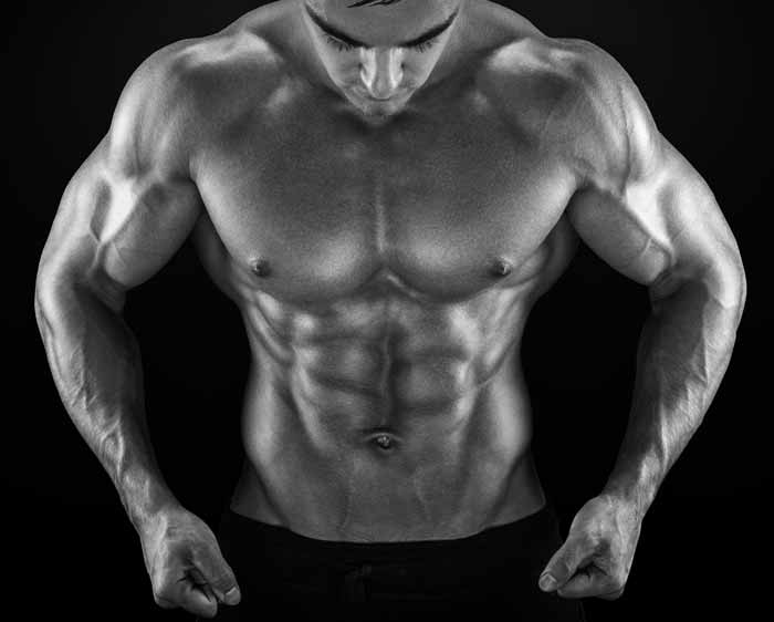 Newly Discovered Protein is Key to Energy Expenditure and Fat Loss