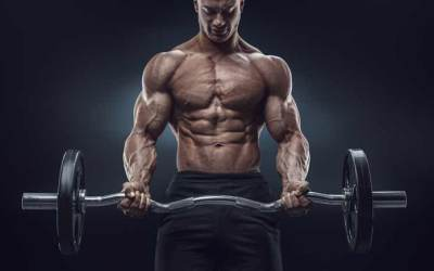 Make Building Muscle Easy