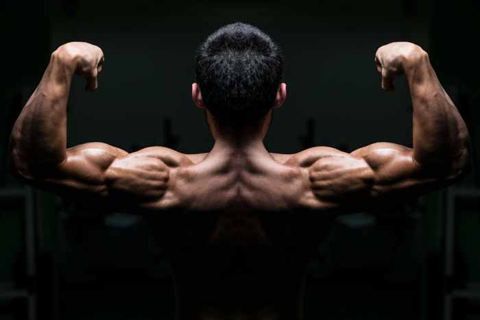 How to Develope Big, Wide, Muscular Shoulders