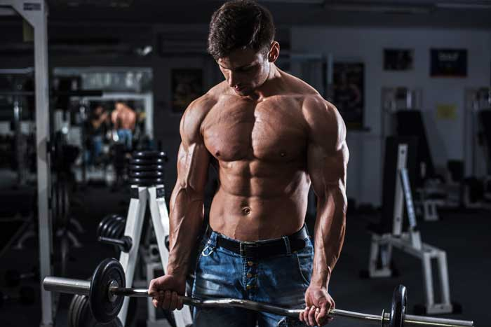 Research Update: Optimize Protein Synthesis and Maximize Muscle Mass! Part-1