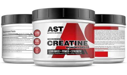 Micronized Creatine 530 Grams - Best Creatine - 3-Up
