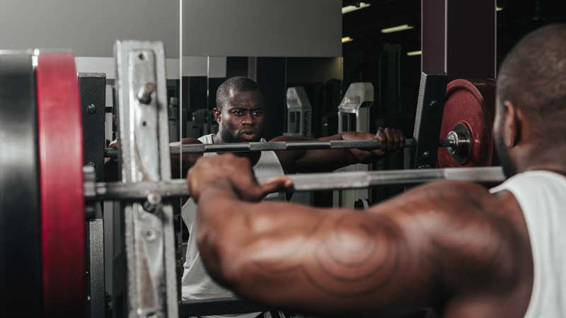 Mass Phase Part 1: Training for Size
