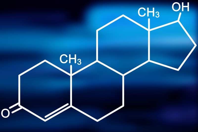 Lower Testosterone – Higher Body fat