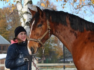equine-assisted programs