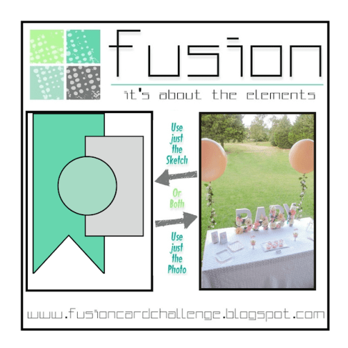 Fusion Baby Shower-Closes 10-9