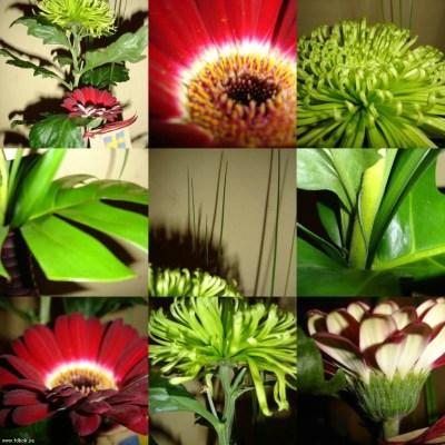Tack för blommorna