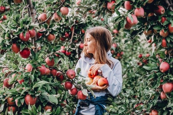 Why apple picking is good for your well being