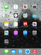 """A Preview of the Wallpaper """"Raindrops on the Glass"""" on the 1st Generation iPad mini - Portrait Mode"""