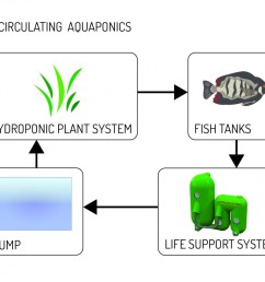 coupled loop diagrams 01 aquaculture systems technologies  [ 1000 x 813 Pixel ]