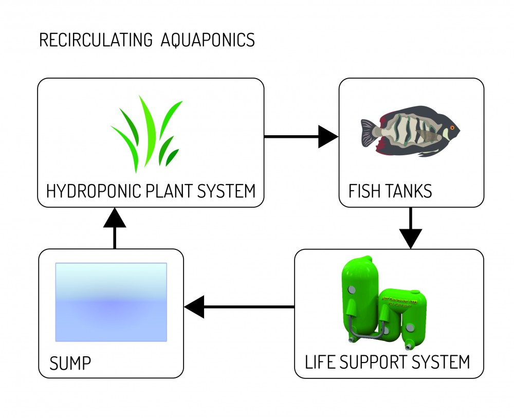 medium resolution of coupled loop diagrams 01 aquaculture systems technologies
