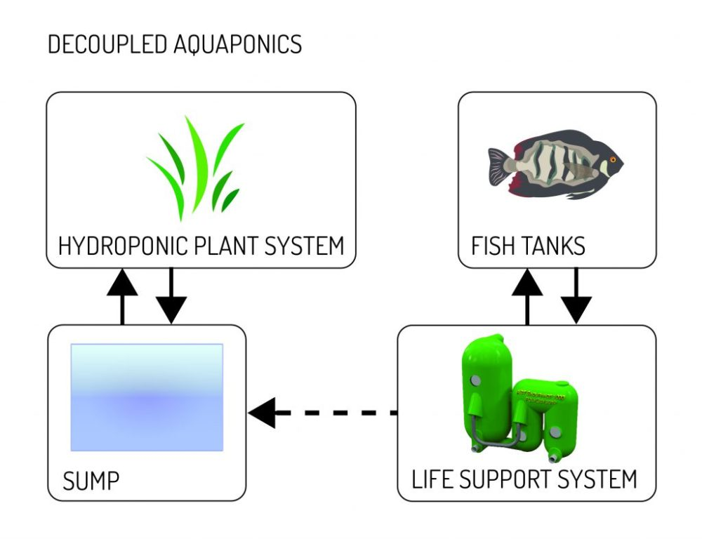 medium resolution of in this type of system the wastewater does not recirculate back to the fish this is made possible by our sludge concentrating polygeyser technology that