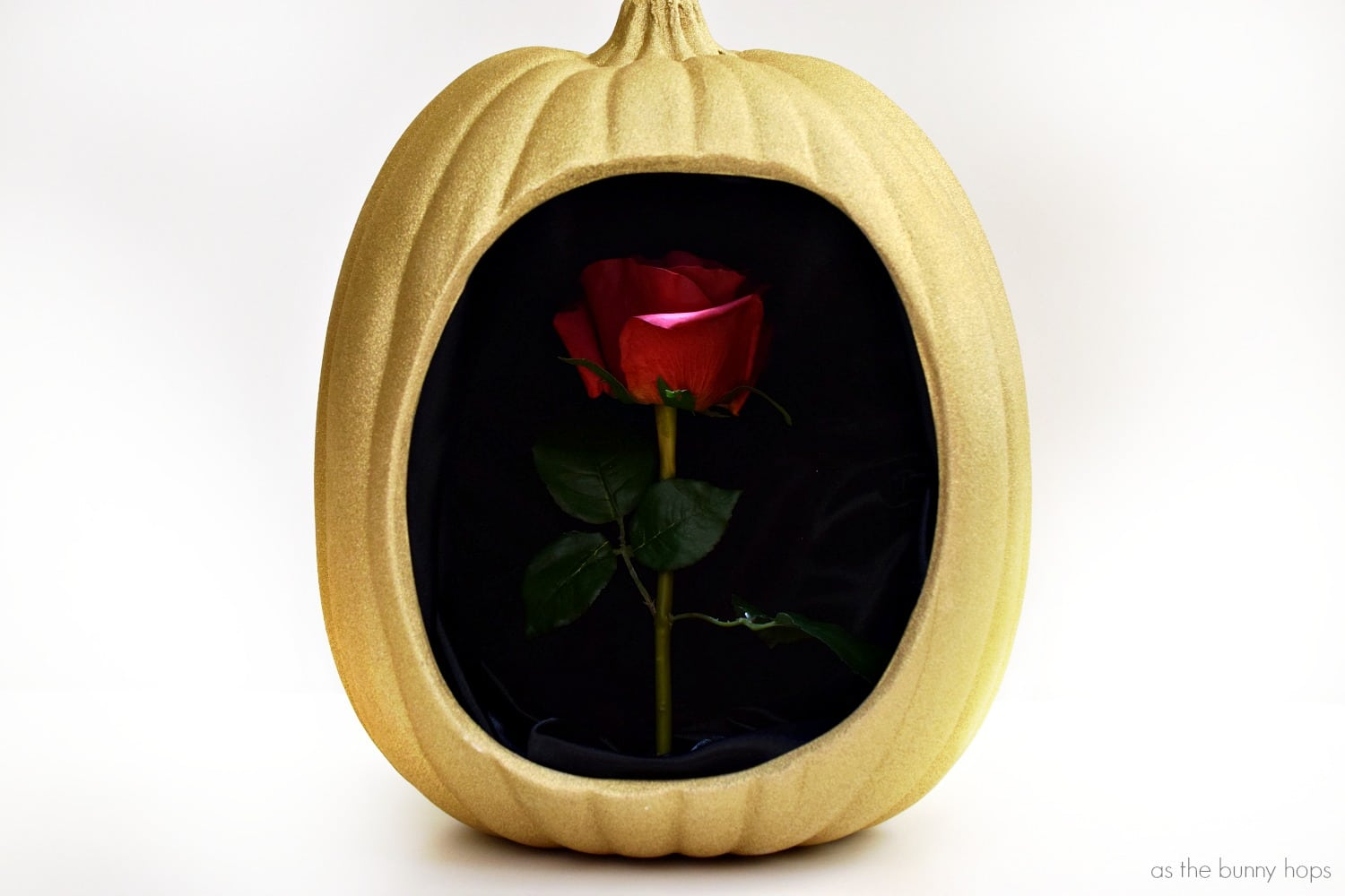 Beauty And Beast Enchanted Rose