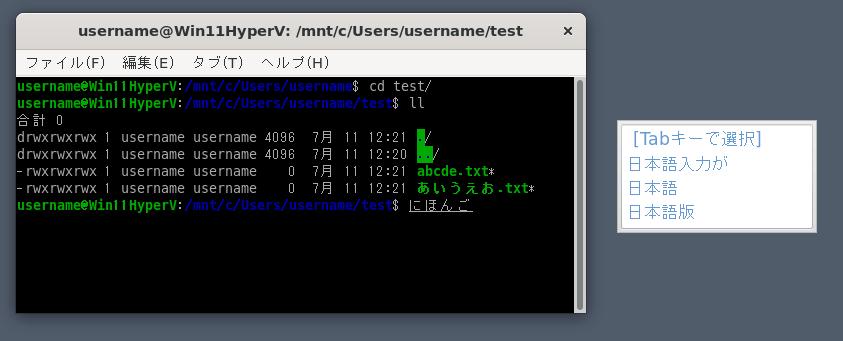 Win11のWSL2 (WSLg)を日本語化 & Mozcで日本語入力