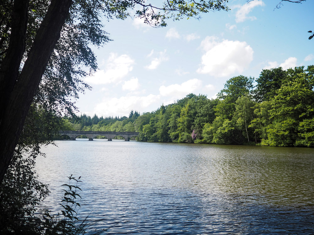 What To Do At Virginia Water