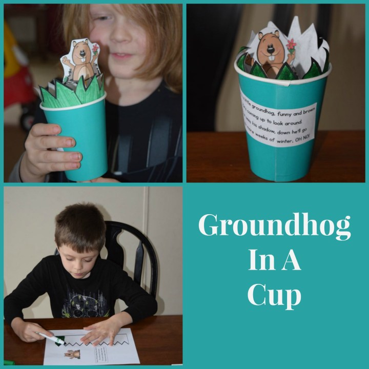 groundhog in a cup