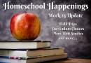 Homeschool Update: Week 23