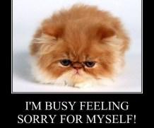 Xolair and Feeling Sorry For Myself