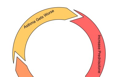 Asthma – Breaking the Cycle