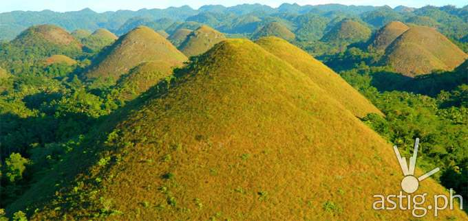 Bohol_Chocolate_Hills