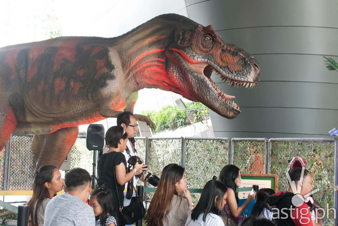 Tyrannosaurus Rex - Dinosaurs Around The World exhibit - Mind Museum BGC