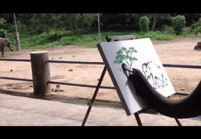 Genuine Elephant Painting By Elephant