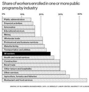 workersin publicprogrammes2014