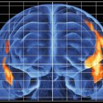 brain-lit-up-