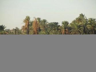 aegypten24