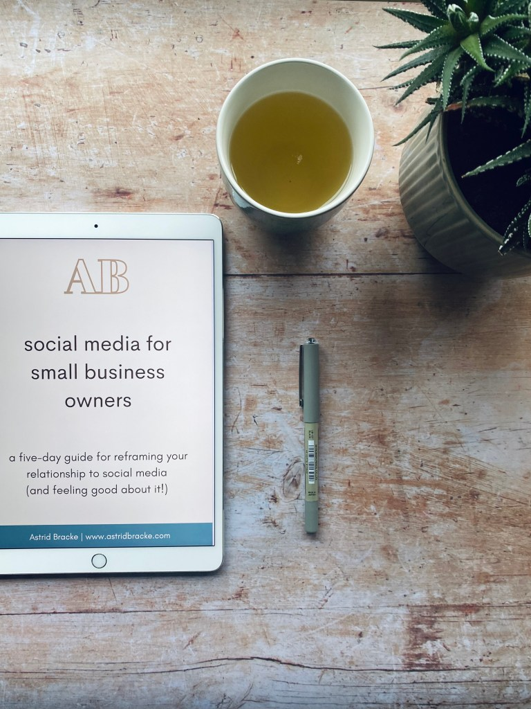 Guide: social media for small business owners