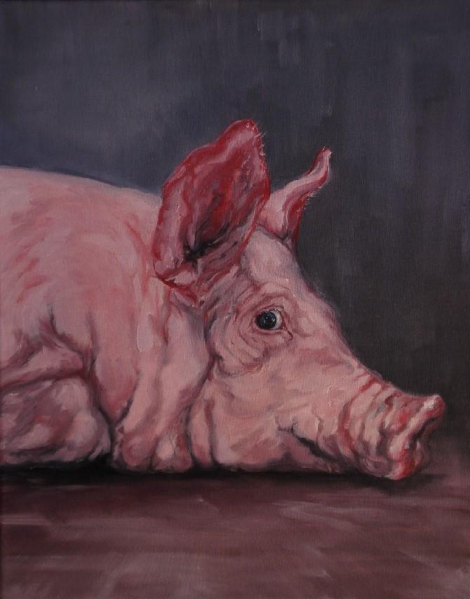 Varken, olieverf op canvas, 40 x 50 cm, 2009