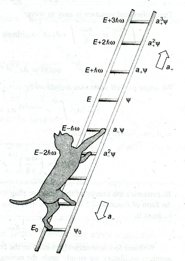 Foundations 2A: Quantum mechanics