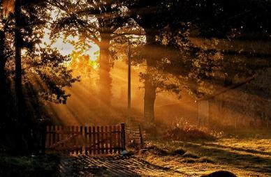 Sunrise booking Astrofarm