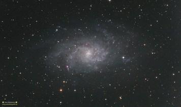 M33. Teleskop C6N (Newton 150/750) Korektor komy MPCC - ISO800 30x300sekund, zmodyfikowany 300D, autoguide via GuideMaster, montaż Vixen GPD2. Kilka dni wcześniej przy identycznych czasach robiłem ten samo obiekt - modyfikacja 300D nie tylko wyraźnie ukazała kolor wodorowych mgławic w galaktyce, ogólnie znacznie wzrosła czułość aparatu!