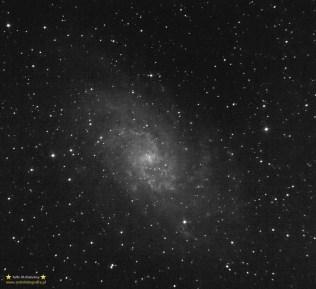 M33. Teleskop C6N (Newton 150/750) - ISO1600 15x120sekund, montaż Vixen GPD2.