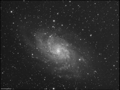 Teleskop Celestron 80ED + TV 0,8x (480mm), SBIG ST2000XM - 21x540s L, montaż Takahashi EM200. Galaktyka M33 to chyba druga najczęściej fotografowana galaktyka po M31. Obie galaktyki są dość blisko siebie i obie są bardzo trudnymi obiektami do sfotografowania. Optymalna ogniskowa dla M33 to okolice 650~750mm. O ile zewnętrzne części galaktyki są ciemne do sam środek jest jasny i bogaty w struktury. Galaktyka przepięknie prezentuje się w kolorze, ale ze względu na słabe warunki pogodowe niestety nie udało mi się naświetlić nic poza luminancją, przez co zdjęcie musi poczekać na skończenie do przyszłego sezonu na M33.
