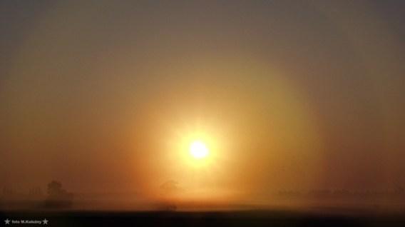 Mgła zaczęła opadać i wokół Słońca powstało podwójne halo, coś czego jeszcze nigdy przedtem nie udało mi się sfotografować.... Olympus E20.