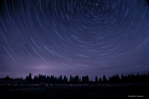 The North star Polaris