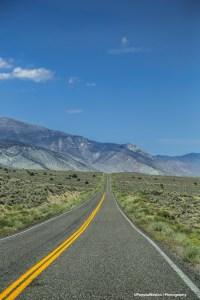 Helloooo Nevada