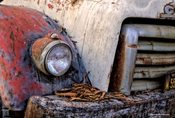 Nice old truck