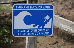 Tsunami...0_0