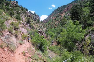 The walk up the creek before the slot canyon