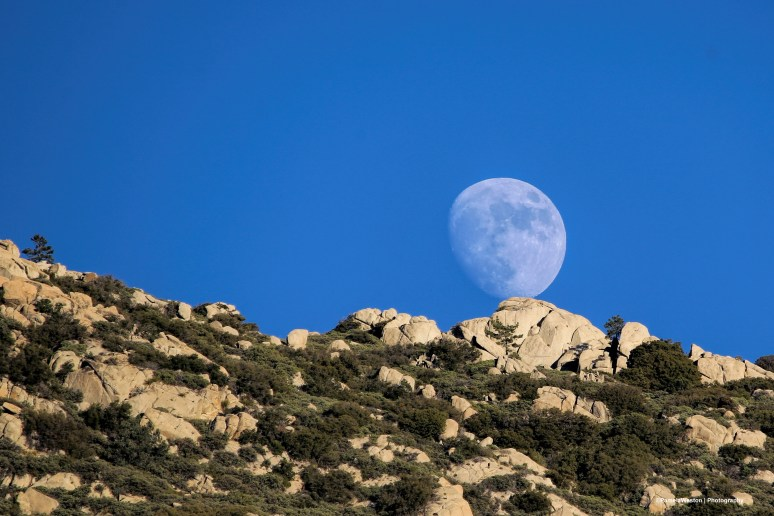 11-22-moonrise-sign
