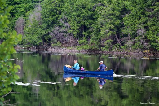 Canoeing in the Park