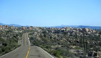 Beautiful boulders and cactus leaving Cataviña